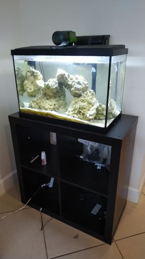 Aquarium with mobile rocks, filter and automatic feeder for Sale in Celebration, FL