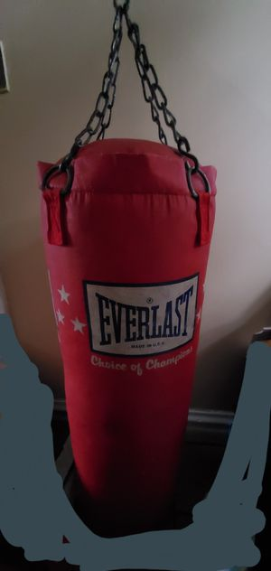 Everlast Punching Bag for Sale in Blue Island, IL