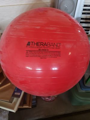 Professional Exercise Ball for Sale in Phoenix, AZ