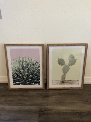 Cactus decor for Sale in Queen Creek, AZ