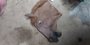 Cosplay Halloween Horse Head Mask Latex Animal ZOO Party Costume Prop Toys Novel for Sale in Gaithersburg, MD