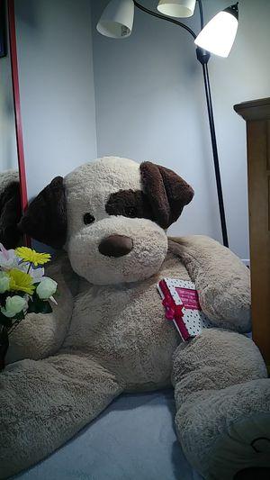 Big Teddy Bear for Sale in Fort Pierce, FL