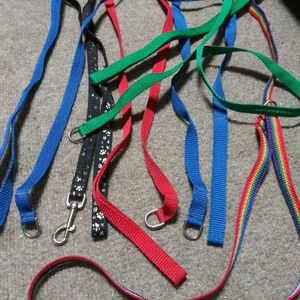 Dog Leash Collection for Sale in Glen Burnie, MD