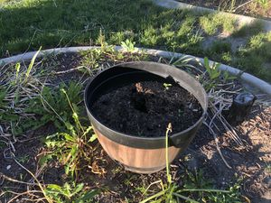 Flower pot for Sale in Salt Lake City, UT
