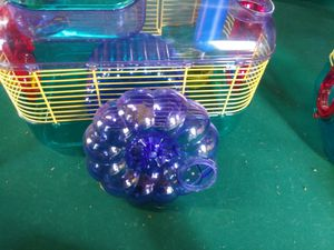 Hamster cage and accessories for Sale in Dansville, MI