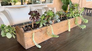 """Real Succulent Plants with Wood Planter Box 36.5"""" x 7"""" x 7"""" for Sale in West Covina, CA"""