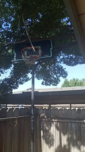 Lifetime special edition basketball hoop 56 in for Sale in Modesto, CA