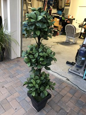 Fake indoor plant for Sale in Winter Garden, FL