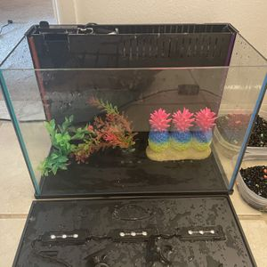Fish Tank With Some Decorations And Rocks for Sale in Framingham, MA