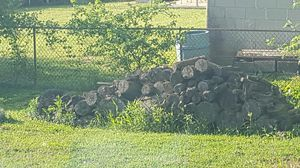 Free firewood! for Sale in Westerville, OH