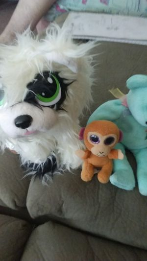 Puppy/monkey/bear, cute litte plushies *good condition* for Sale in Norfolk, VA