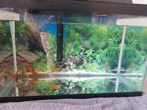 10 Gallon fish tank for Sale in Herndon, VA