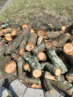 Cherrywood logs for Sale in Mount Oliver, PA