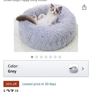 Cat Bed for Sale in Webster, MA