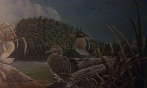 Ducks unlimited print for Sale in Lakeside, AZ