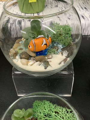 Terrariums (perfect gift for all occasions and all ages) for Sale in Renton, WA