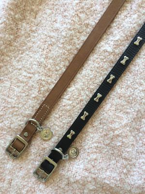 Bond & Co. dog collars (medium) for Sale in Los Angeles, CA