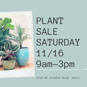 Plant Sale for Sale in San Diego, CA