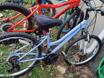 24in Bike for Sale in Bremerton,  WA