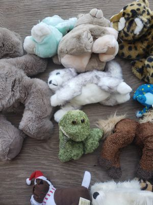 Moving box full of adorable stuffed animals! for Sale in Tempe, AZ