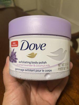 Dove for Sale in Cranston, RI
