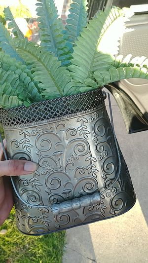 Fake plant for Sale in Richardson, TX