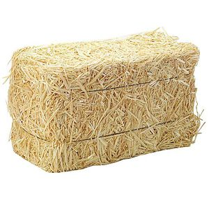 Five FREE hay bales / straw bales for Sale in Seattle, WA