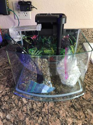 Jbj 3 gallon pico aquarium with everything for Sale in Phoenix, AZ