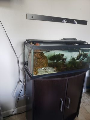 Aquarium plus stand only for Sale in Oceanside, CA
