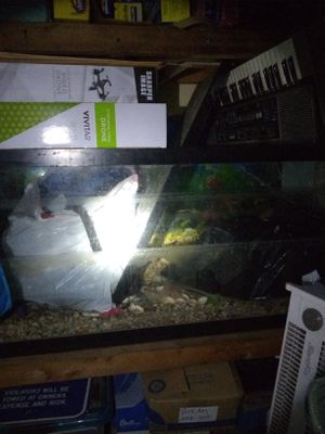 75g fish tank 75 gallon for Sale in Berwyn Heights, MD
