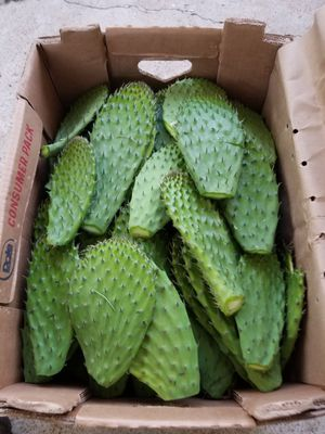 ~~~~ 🌵 NOPALES FRESCOS!!! $20.00 caja 🌵~~~ for Sale in San Diego, CA