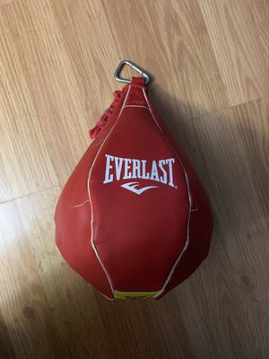 Everlast Speed Bag for Sale in Andover, CT