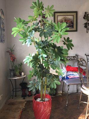 Fake plant for Sale in Grand Prairie, TX