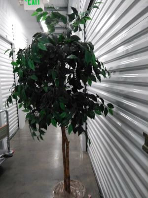 Fake plants for Sale in Kent, WA