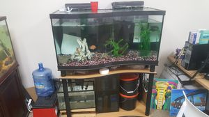 90 gal CURVED Aquarium Fish Tank - Complete for Sale in San Diego, CA