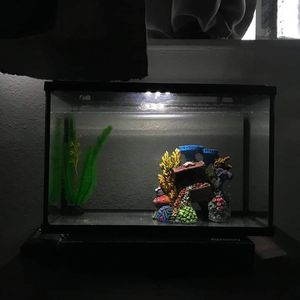 10 gallon top fin fish tank for Sale in North Las Vegas, NV