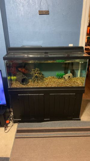 75 Gallon Fish Tank for Sale in Cleveland, OH