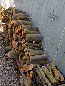 Firewood!! Good For Camp Fire 🔥 Must Go!!! Negotiable!!! Make a Fair Offer!!! for Sale in Stockton,  CA