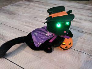 Halloween Cat Sings! for Sale in Seminole, FL