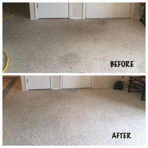 Carpetcleaning for Sale in Tampa, FL