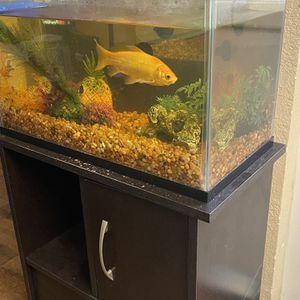 Top fin - 10 Gallon Fish Tank & Aquarium Stand With Filter, 8 Cartridges And 3 Filter Pads for Sale in Monrovia, CA