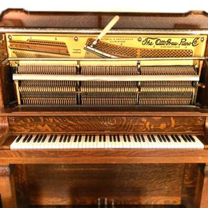 Piano NOT for sale. I will tune YOUR piano for $100 for Sale in Warren Park, IN