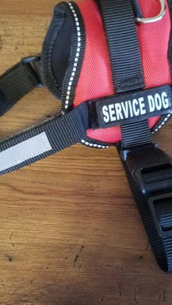 XS Service HARNESS for Sale in Ellensburg,  WA