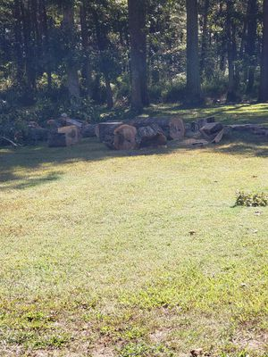 Free white oak and red oak cut up for Sale in Egg Harbor City, NJ