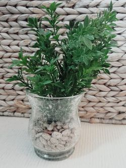 Mini Indoor Fake Faux Artificial Green Plant Home Decor Decoration for Sale in North Las Vegas,  NV