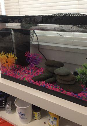 10 Gallon Aquarium With Betta for Sale in Alexandria, VA