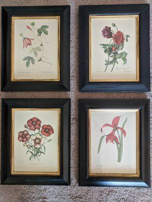 Framed fine art prints for Sale in Maple Grove, MN