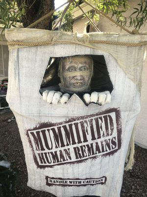 Crated mummy for Sale in Las Vegas, NV
