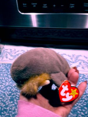 Jolly the walrus. Ty beanie baby for Sale in Leominster, MA