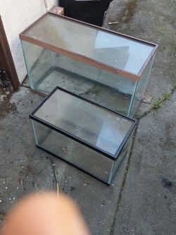 Glass Tanks For Pet for Sale in Mount Hamilton,  CA